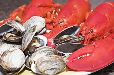 Where to get fresh Maine Lobsters